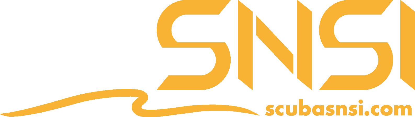 SNSIロゴ