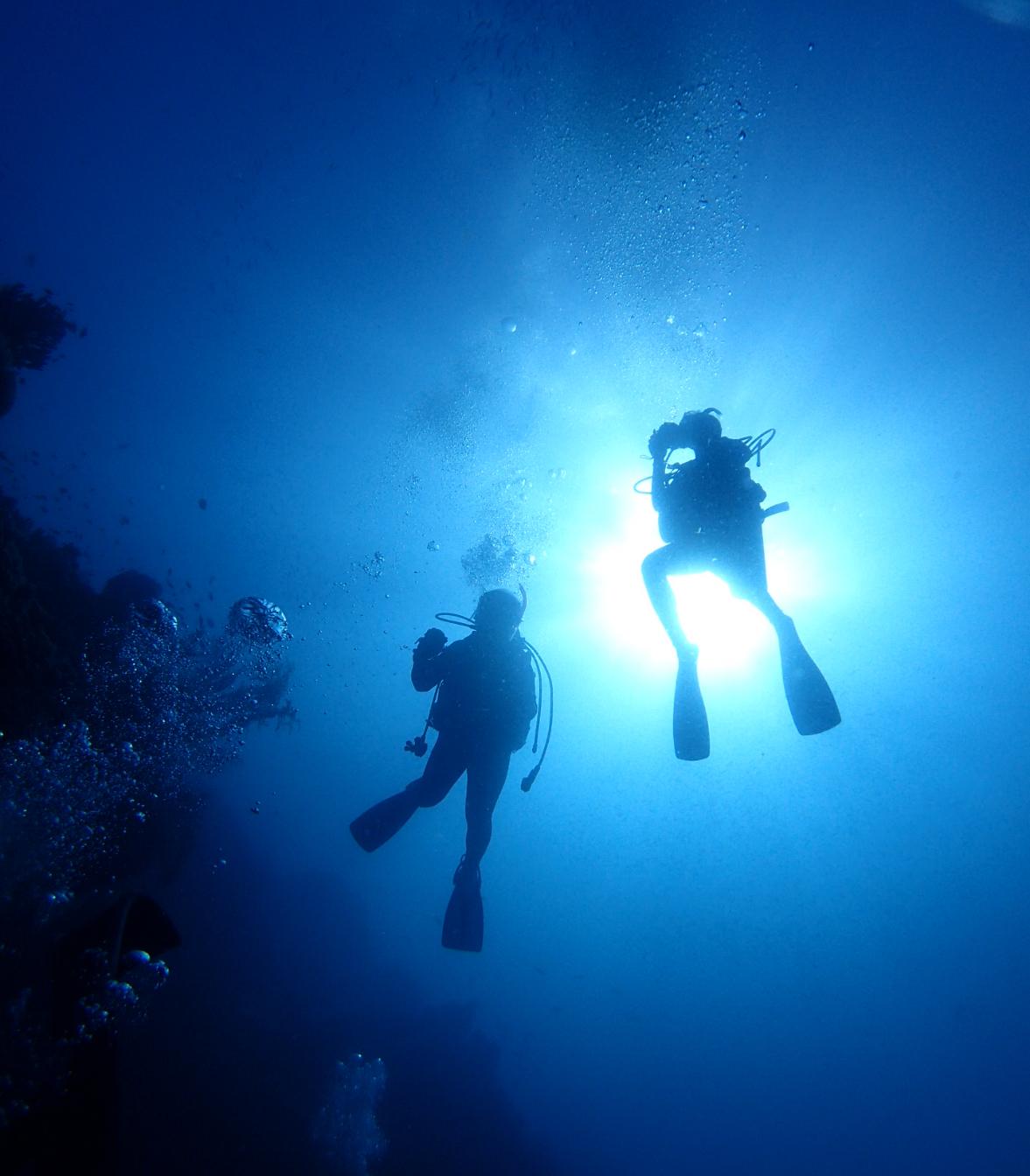 海の中を潜るダイバー