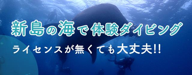 新島の海で体験ダイビング ライセンスが無くても大丈夫!!